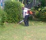 Jasa potong rumput jabodetabek wa 085641290679