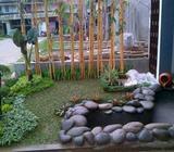 Taman dan kolam relief, minimalis - Serang Kota - Rumah Tangga