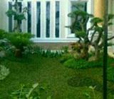 Taman rumah berkelas dan jual rumput - Tangerang Kota - Rumah Tangga
