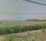 Tanah 0 Jln raya Wringinanom (Kawasan industri Gresik)