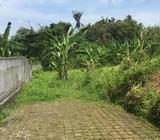 Tanah Siap Bangun Kawasan Villa Lokasi Di Area Padang Linjong - Denpasar Kota - Tanah