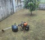 Potong rumput.tebas rumput.pangkas rumput panggilan - Palembang Kota - Jasa