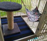 Kandang kucing portable - Jambi Kota - Hewan Peliharaan