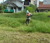 Jasa tukang potong rumput Jasa tukang tebas rumput - Palembang Kota - Jasa