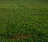 Tanah Banyu Urip Surabaya