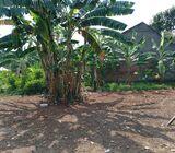 Tanah 90 m2 belakang Sekolah Global Kalimulya Depok