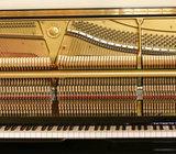 Stem Piano /service& service Organ